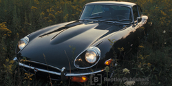 Jaguar E-Type Series 2  1969-1971